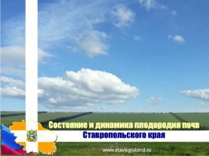 презентация Подколзина А.И.