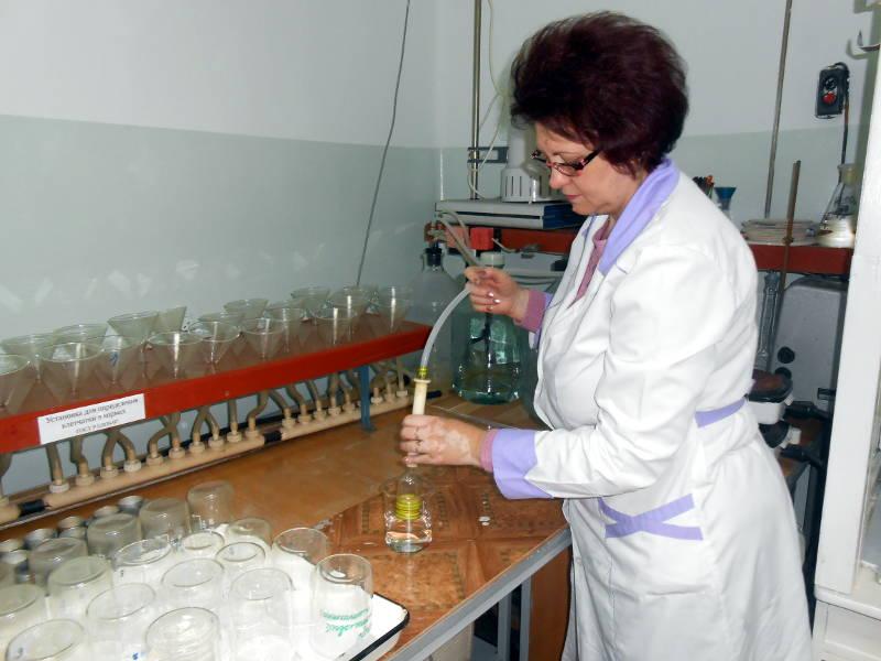 Определение сырой клетчатки в комбикормах. Ведущий агрохимик Ометова Т.Г.