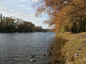 Осень в Белгороде. Река Везёлка