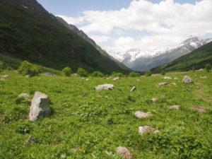 Каменный хаос в долине Домбай-Ульген