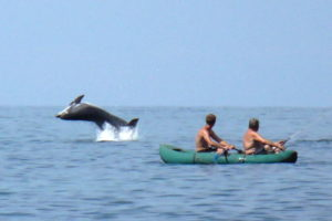Рыбаки и игривый дельфин