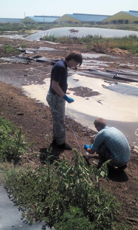 Отбор проб навозных стоков из лагун животноводческих комплексов проводят: агрохимик Фуфлев С.В. и ведущий инженер Сторчак Е.А.