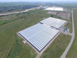 Действующий тепличный комплекс ООО «Эко-культура» площадью 10,0 га