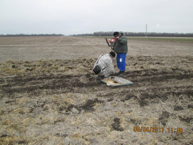 Отбор почвенных образцов ООО СХП «Урожайное» Ипатовского района