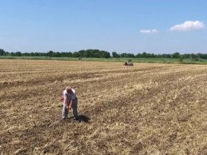 Почвенно-агрохимическое обследование проводит главный почвовед Макоед А.А.