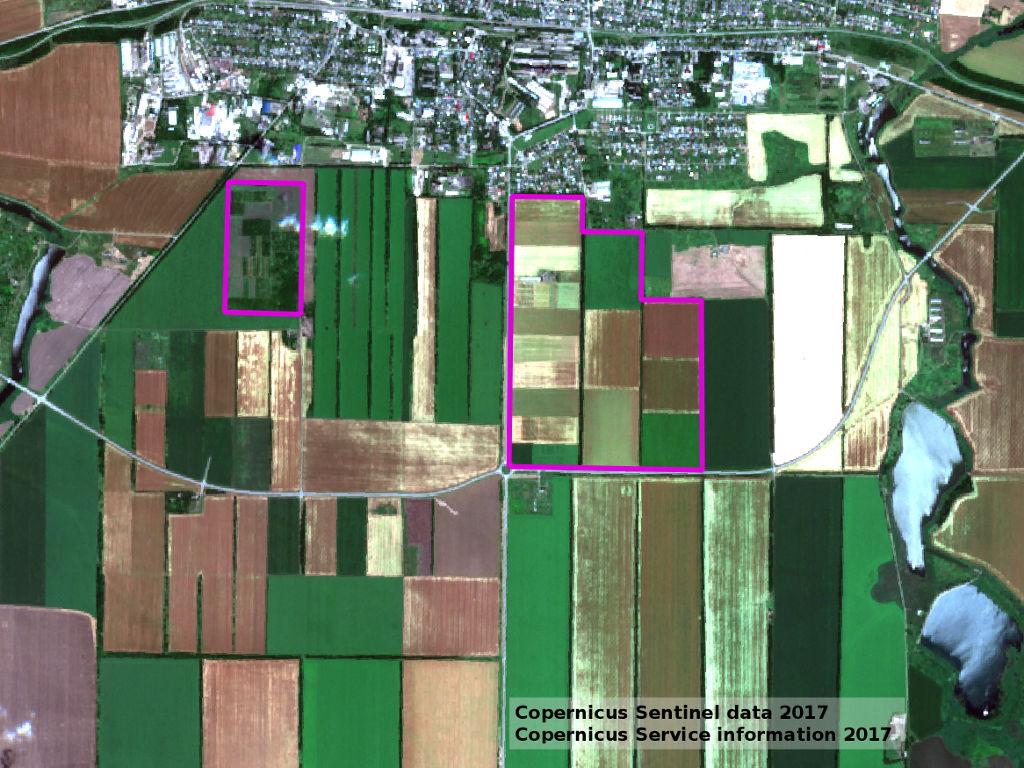 Космоснимок двух госсортоучастков Новоалександровского района