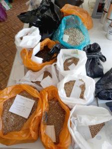 Пробы зерна, поступившие на испытания (урожай 2017)