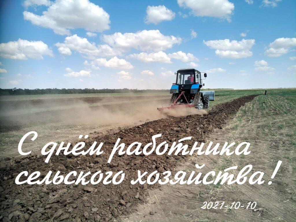 С Днём работника сельского хозяйства и перерабатывающей промышленности!