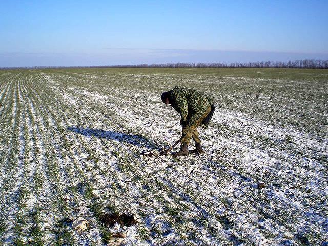 Сотрудник отдела Бондаренко А.А. отбирает образцы растений