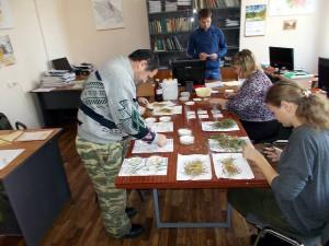 Подготовка растений к проращиванию в чашках Петри