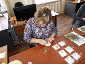 Подготовка растений для заливки раствором тетразола