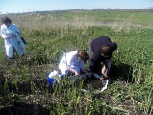 Обследование и отбор проб почвы под разработку проекта на рекультивацию ранее не используемого земельного участка. Специалисты агрохимцентра «Ставропольский»