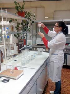 Определение кислотности. Ведущий агрохимик ‑ Прудникова Е.В.
