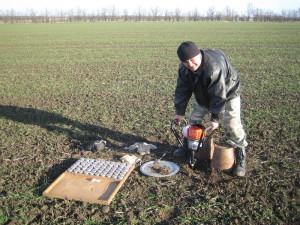 Главный агрохимик отд. ПУиО Давыдов В.Е. проводит отбор почвенных образцов