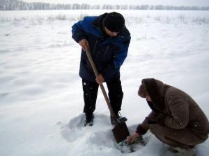 Сотрудники отдела Давыдов В.Е. и Кузьминова Н.В. оценивают состояние озимых культур в Труновском районе