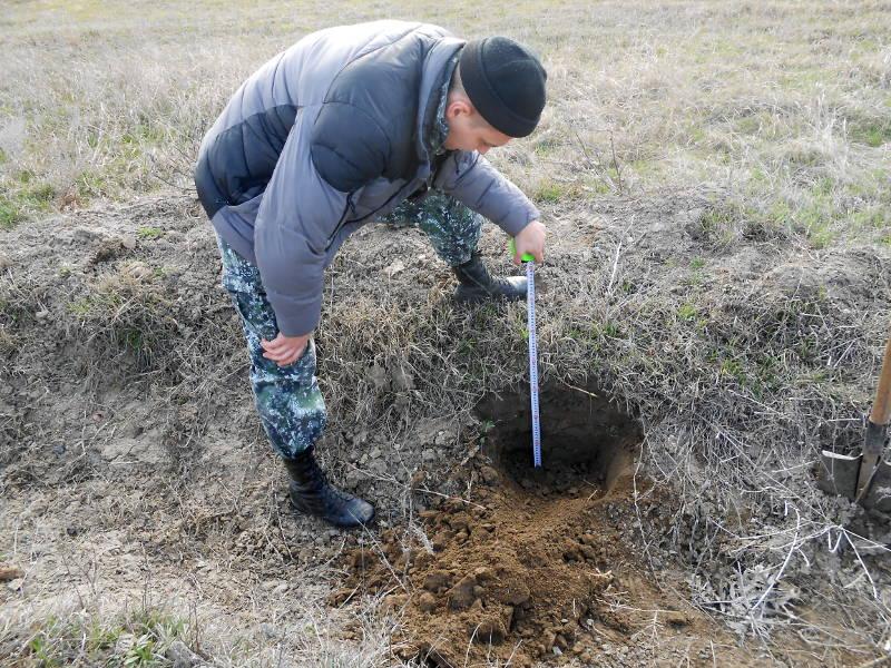 Измерение плодородного слоя почвы на аллювиальных щебенчатых почвах