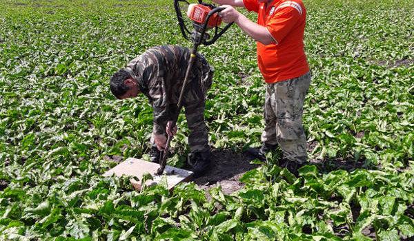Мониторинг состояния азота и влаги в почве