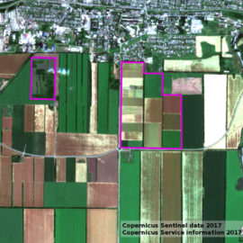 Мониторинг земель госсортоучастков