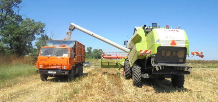 Рекомендации по использованию соломы на удобрение в Ставропольском крае