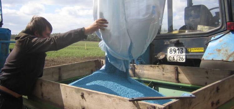 Производственный опыт на посевах озимой пшеницы