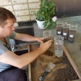 Эксперимент по регулированию щёлочности агрохимическими мелиорантами