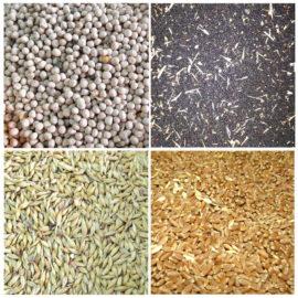 Качество и безопасность зерна