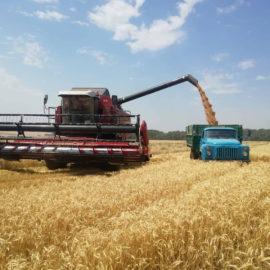 Использование удобрений под урожай сельскохозяйственных культур в 2018 году
