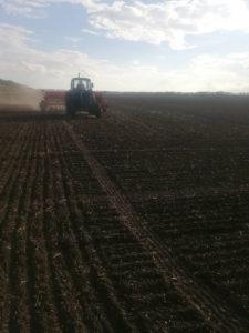 Сев озимой пшеницы на опытных делянках
