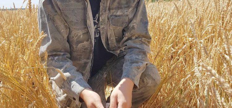Специалист отдела МПП Фуфлев С. В. проводит отбор смешанного почвенного образца