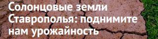 Солонцовые земли Ставрополья | NewsTracker