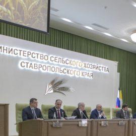 Итоги работы АПК на Ставрополье