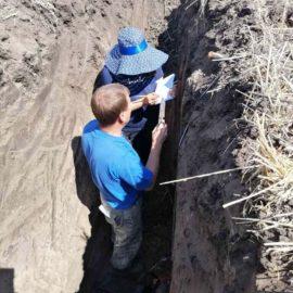 Пригодность почв под посадку виноградников