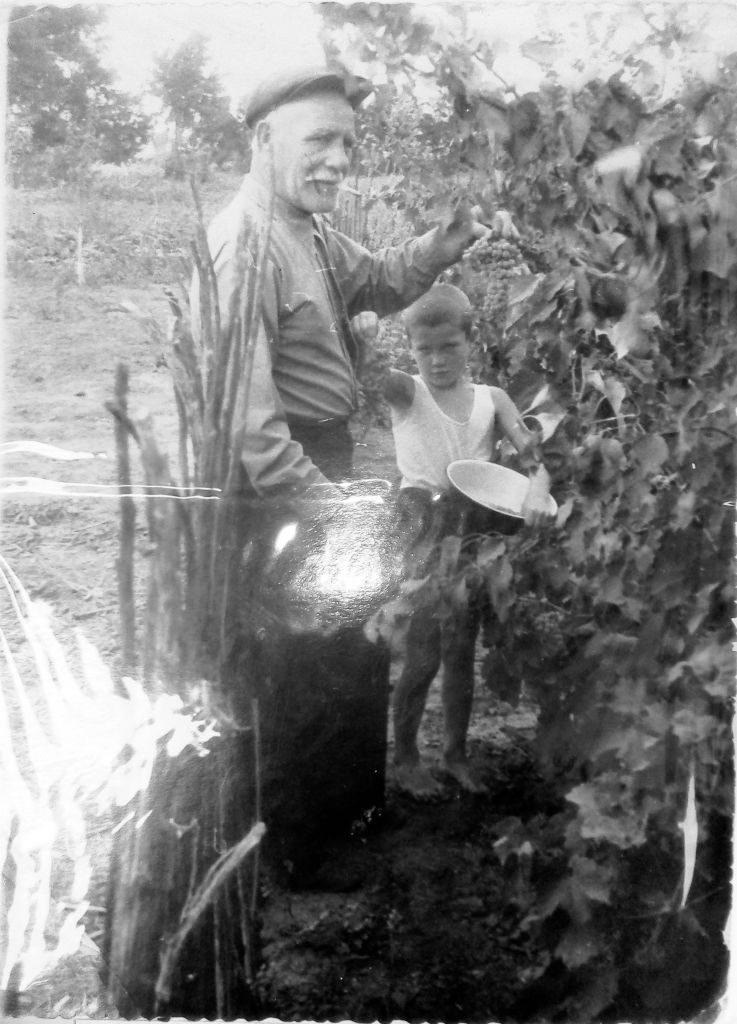Архивное фото. Воронин Иван Иванович (прадед Геннадия) в своём винограднике