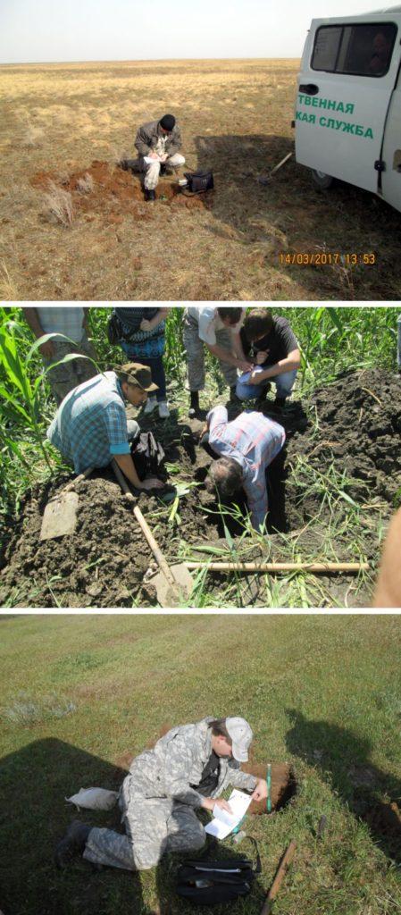 Описание почвенного разреза