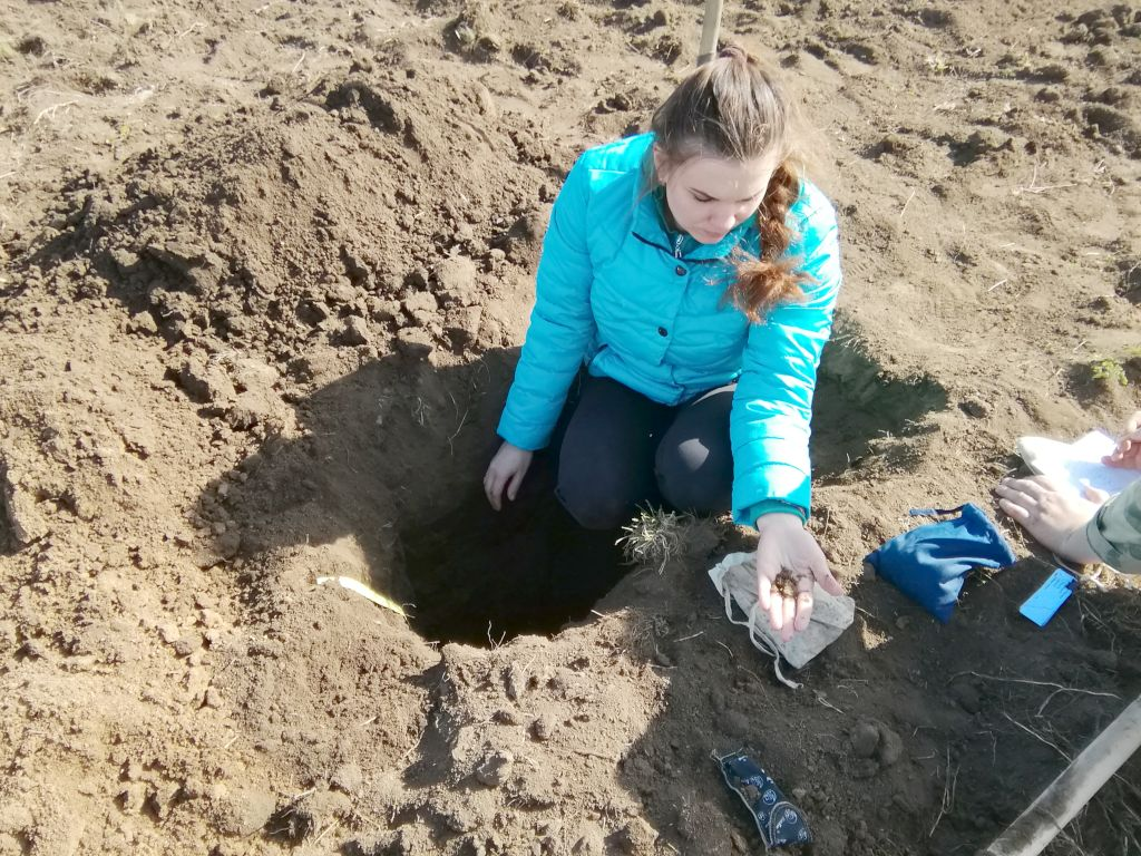 Агрохимик I категории Диана Тарадина проводит описание почвенного профиля и отбор проб почвы