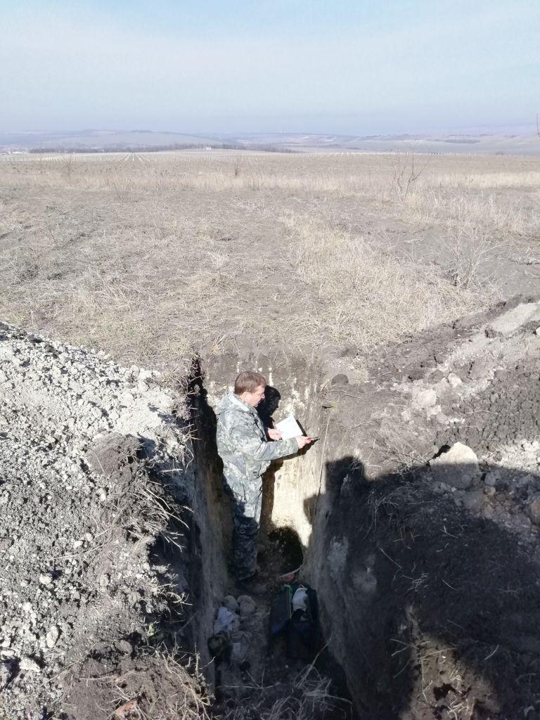 Главный почвовед Вадим проводит описание почвенного профиля