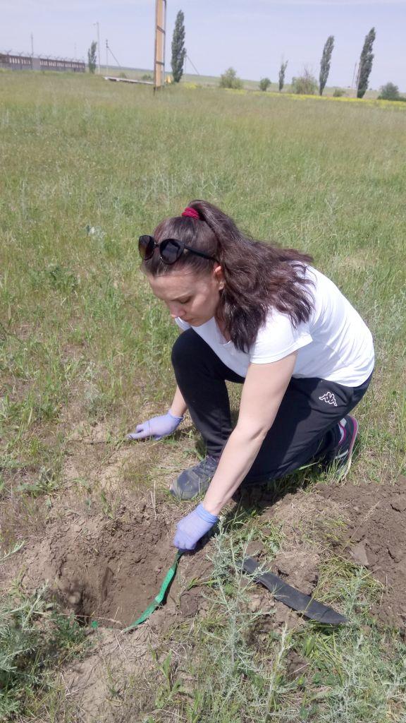 Отбор точечной пробы на объекте осуществляет агрохимик I категории Диана Тарадина