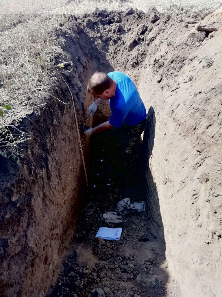 Главный почвовед Вадим Чернов проводит отбор образцов из горизонтов почвенного профиля
