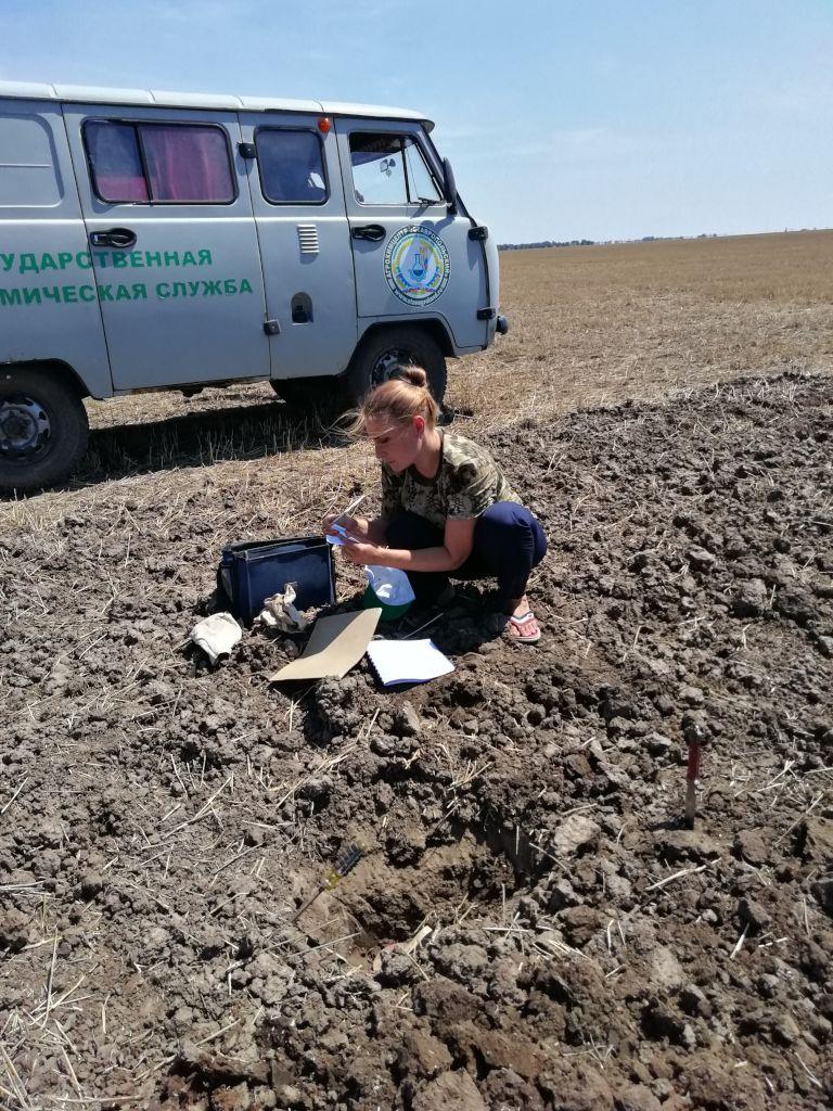 Ведущий агрохимик Наталья Махалина проводит описание почвенного профиля и отбор проб почвы
